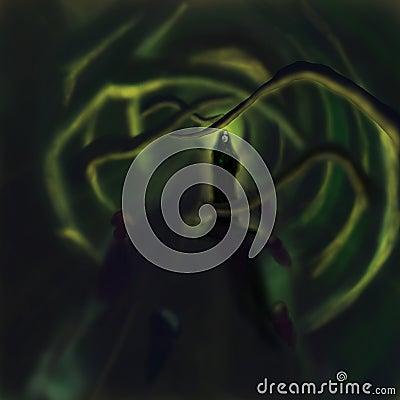 Prêtresse magique de forêt