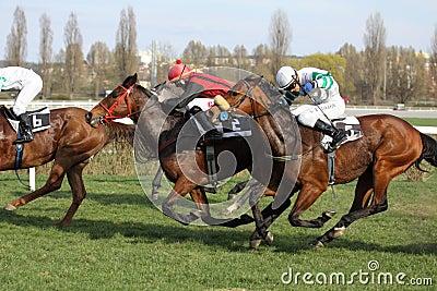 Prague horse racing - office depot race Editorial Stock Image