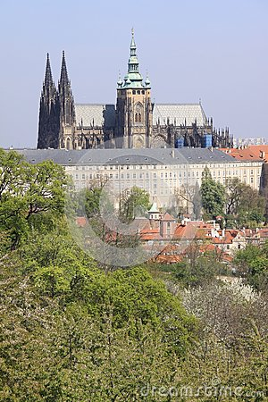 Prague s gothic Castle with flowering trees