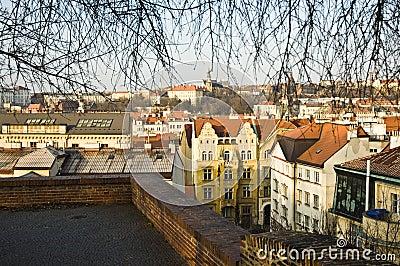Prague sity