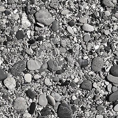 Praia da telha em preto e branco
