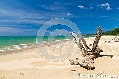 Praia do mar de Andaman em Tailândia