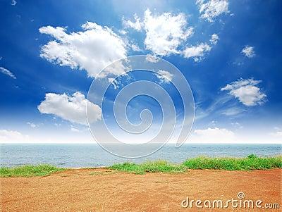 Praia do sol da areia do mar da grama verde