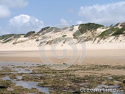 Praia em Mozambique