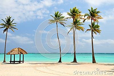Praia na República Dominicana