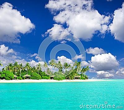 Praia tropical com as palmeiras sobre o céu azul