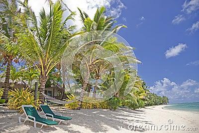Praia tropical com palmeiras e cadeiras da sala de estar