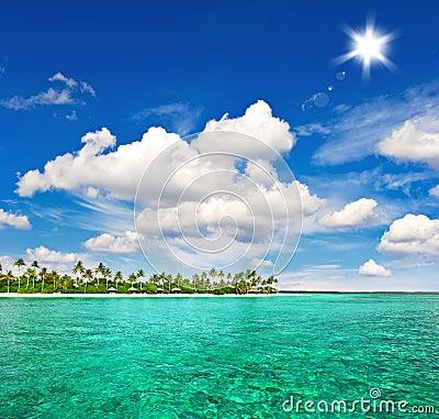 Praia tropical com palmeiras e o céu azul ensolarado