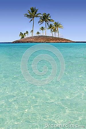 Praia tropical de turquesa do console da palmeira do paraíso