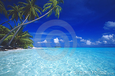 Praia tropical maldives