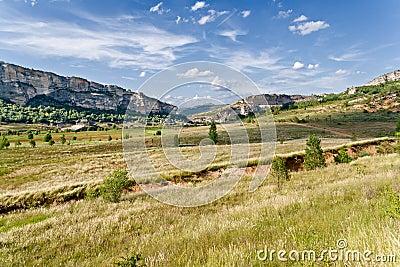 Prairie in La Noguera, Catalonia
