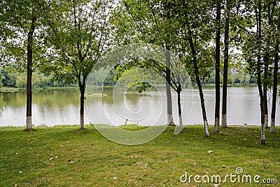 Prato inglese erboso sopra lakeshore di estate soleggiata - Soleggiato in inglese ...
