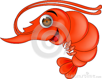 Prawn cartoon