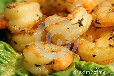 Prawn or shrimp