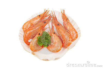 Prawns in scallop