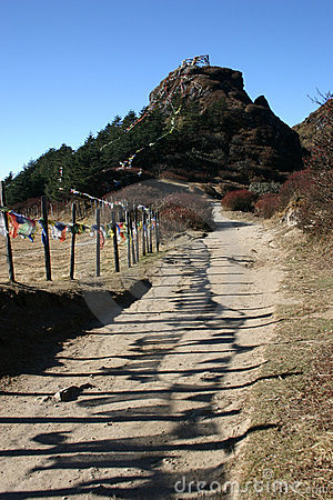 Prayer flags along hill trail, northeast India