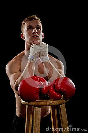 Praying Boxer Stock Image - Image: 25567521