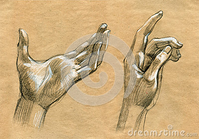 Praying Hands drawing illustration realistic sketch Cartoon Illustration