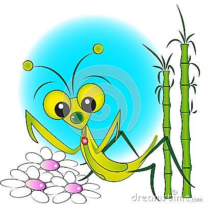 Praying mantis - Kid Illustration