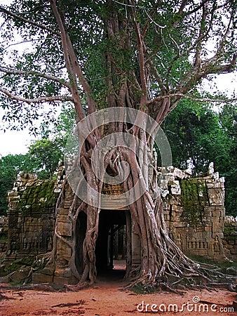 Preah Khan Temple In Angkor Wat Cambodia Stock Image