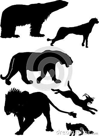 Predator silhouettes