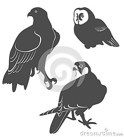 The predatory birds