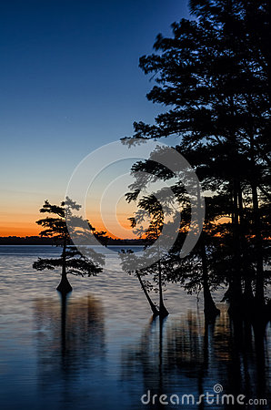 Free Predawn Reflections, Reelfoot Lake, Tennessee Stock Photography - 44295452