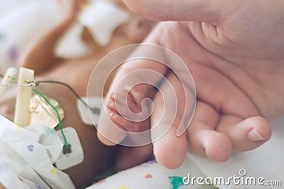 Preemie holding dads finger