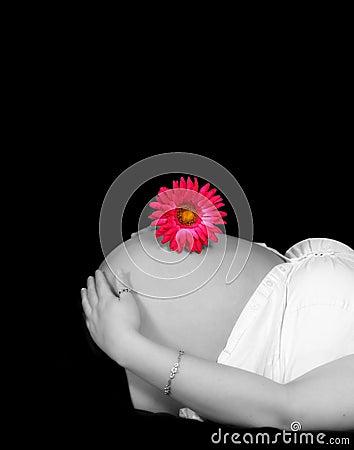 Crno-bijelo u boji - Page 7 Pregnant-belly-in-black-and-white-daisy-in-color-thumb19279361