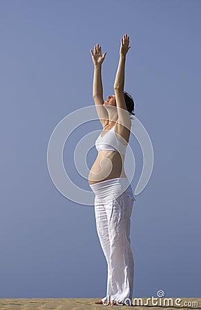 Free Pregnant Girl On The Beach Stock Photos - 4002183