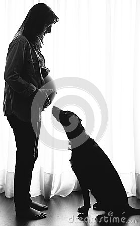 Free Pregnant Woman And Dog Stock Image - 58221921