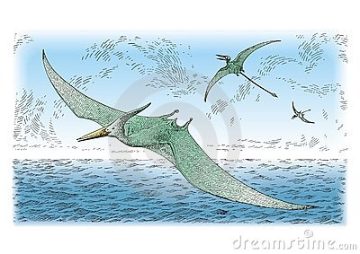 Prehistoric birds