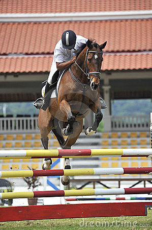 Premier Cup Equestrian Show Jumping Editorial Photo