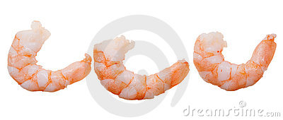 Prepared shrimp isolated