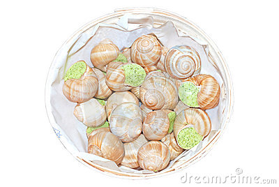 Prepared snails escargot