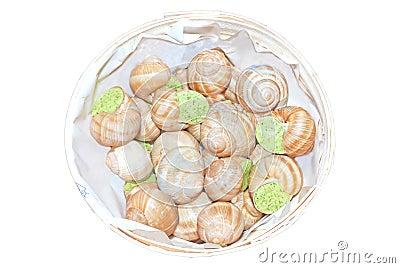Prepared snails escargot