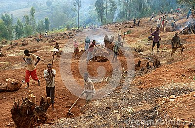 Preparing the land for agriculture, Uganda Editorial Stock Image