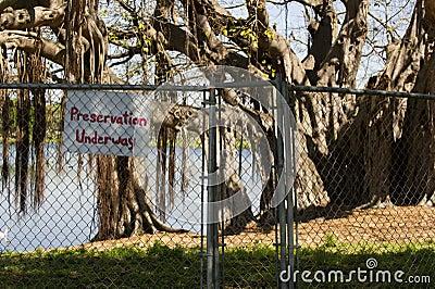 Preservation area
