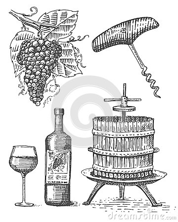 Free Press For Grapes Sketch Corkscrew Wine Bottle And Glass In Vintage Style, Engraved Woodcut Illustration Royalty Free Stock Photos - 84885198