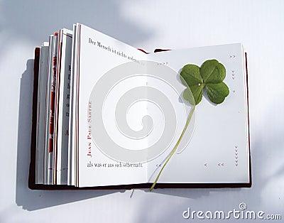 Pressande leaf för 4 växt av släkten Trifolium