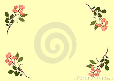 Pressed Pink Roses