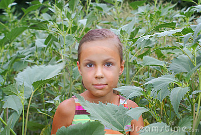Preteen Girl In Green Grass Royalty Free Stock Photo - Image: 9303265