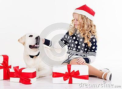White labrador gifts