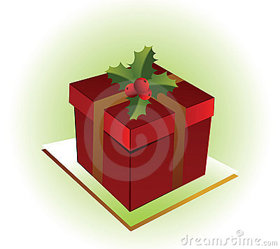 Pretty christmas present