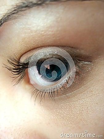 Pretty Eye Lashes