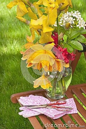 Pretty Flowers Freshly Cut from Garden