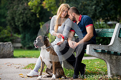Pretty Young Family With Dogs