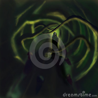 Priestess mágico da floresta