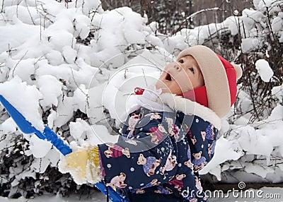 Primeira neve