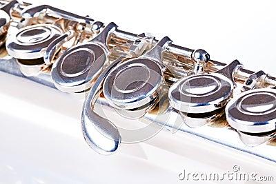 Primer de la flauta